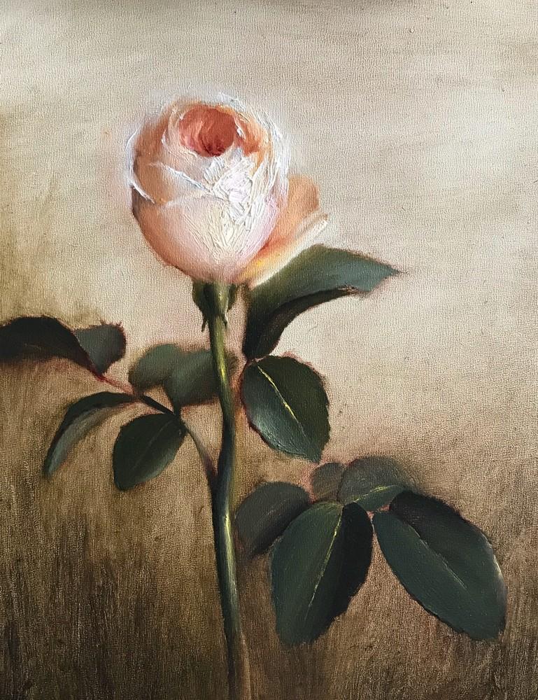 Garden Rose Art | Cristina Goia