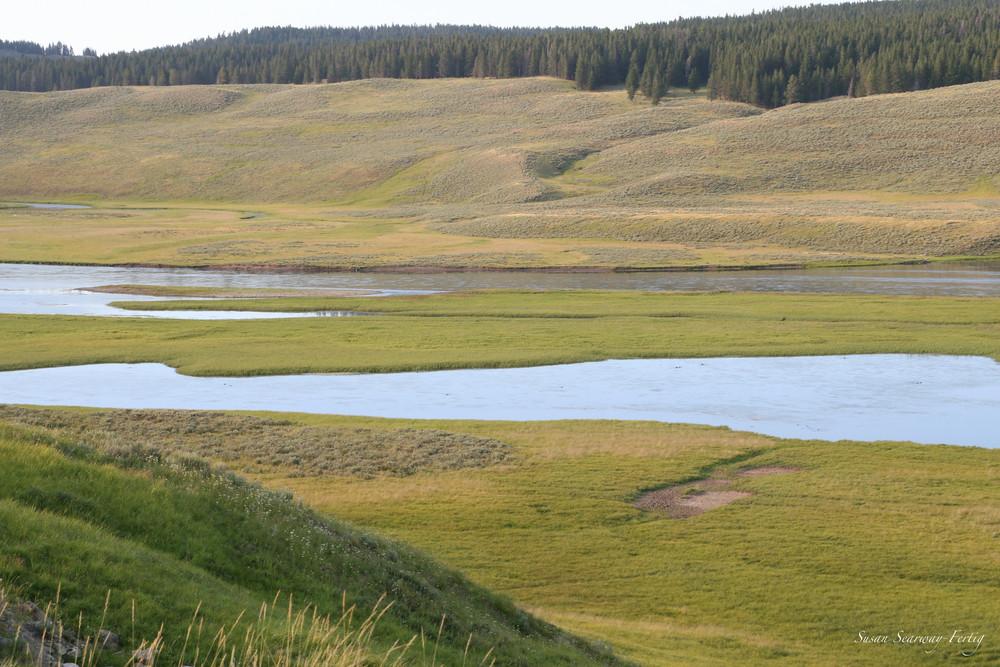 Yellowstone National Park 9 Art | Susan Searway Art & Design