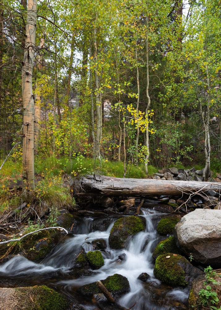 Meadow & Falls Photography Art | Leiken Photography