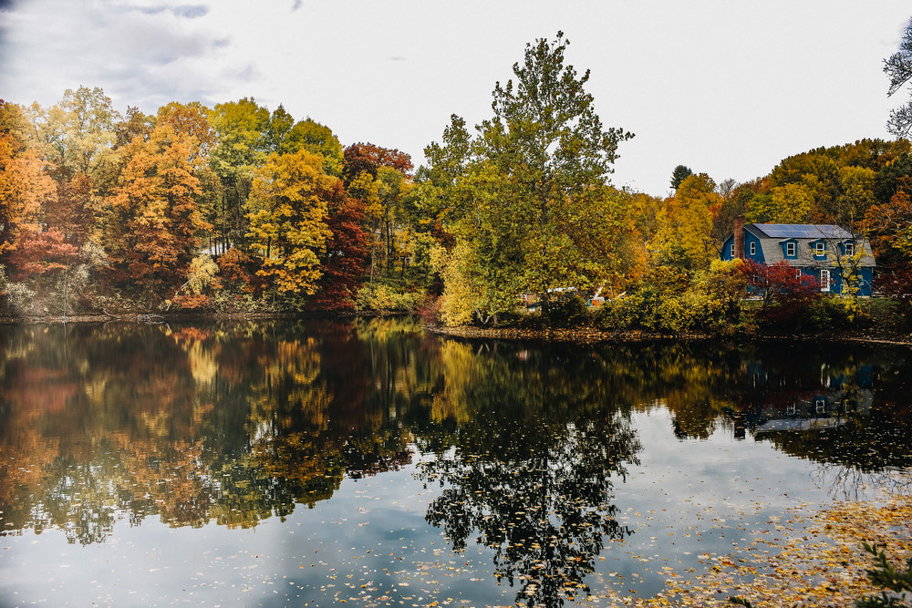 Golden Pond Photography Art | LenaDi Photography LLC