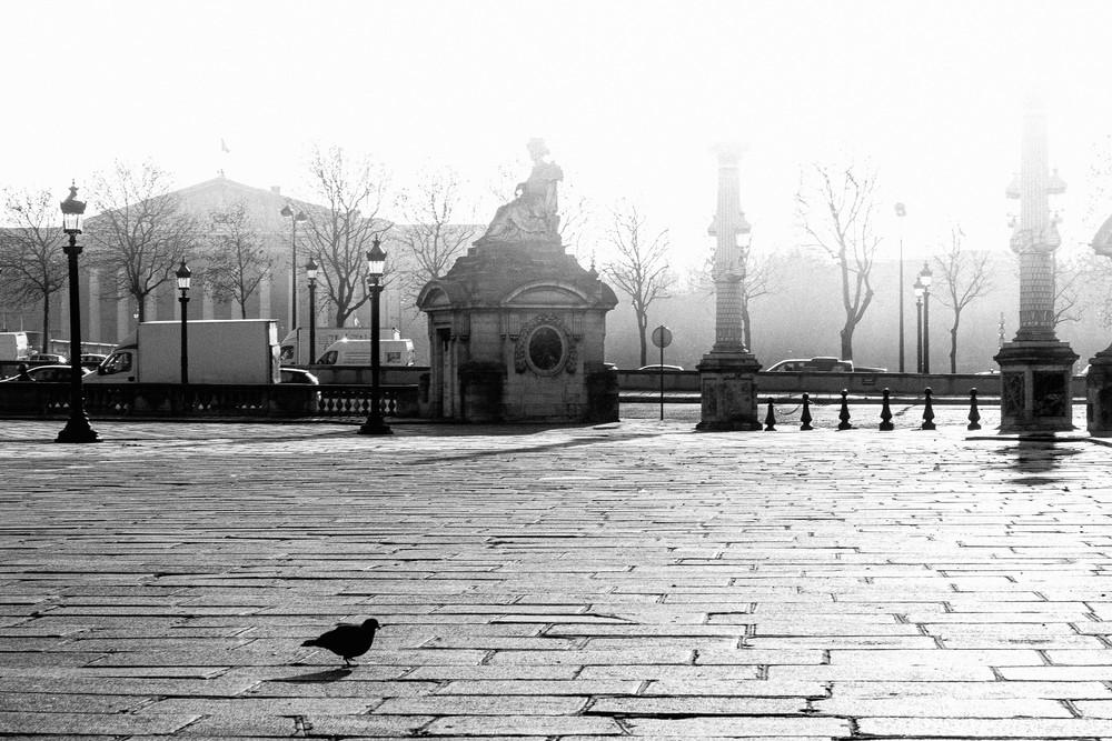 Place De La Concorde Photography Art   LenaDi Photography LLC