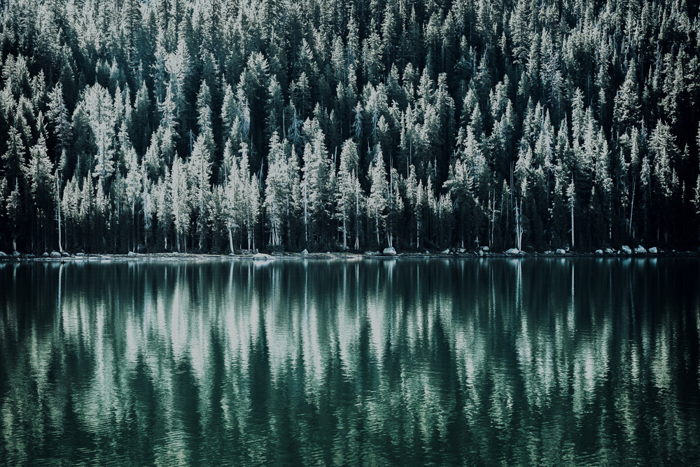 Evergreen - Late afternoon sun and shadows on a mountain lake near Yosemite, California photograph print