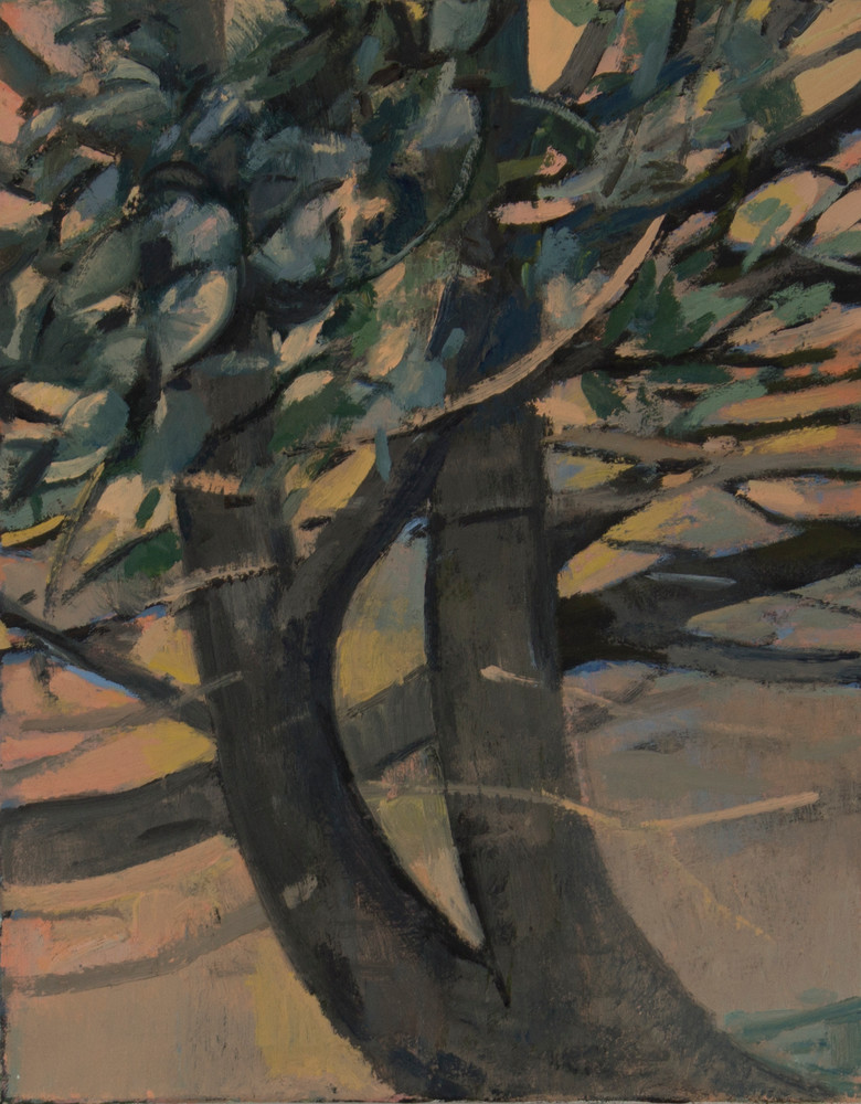 Favorite Tree At Jefferson Park Art | Jono Wright Art