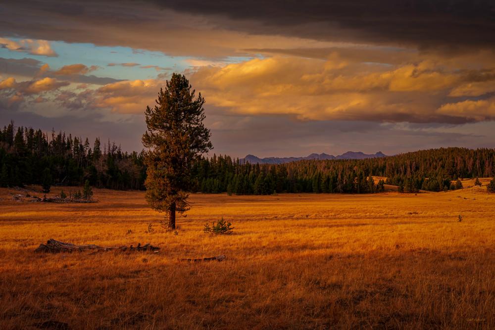 Alpine Sollitude Photography Art | McKendrick Photography