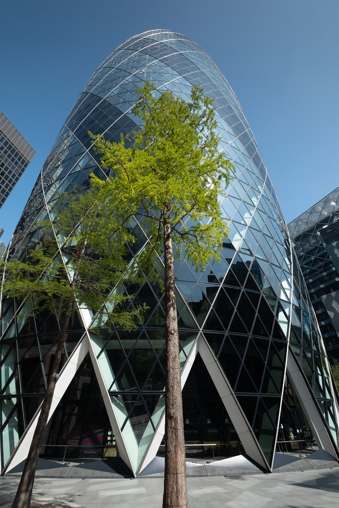 A Tree and a Gherkin, London