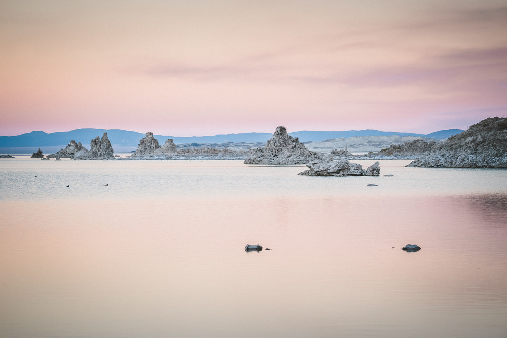 Pretty in Pink - Mono Lake, California at sunset photograph print by Heather Roberson