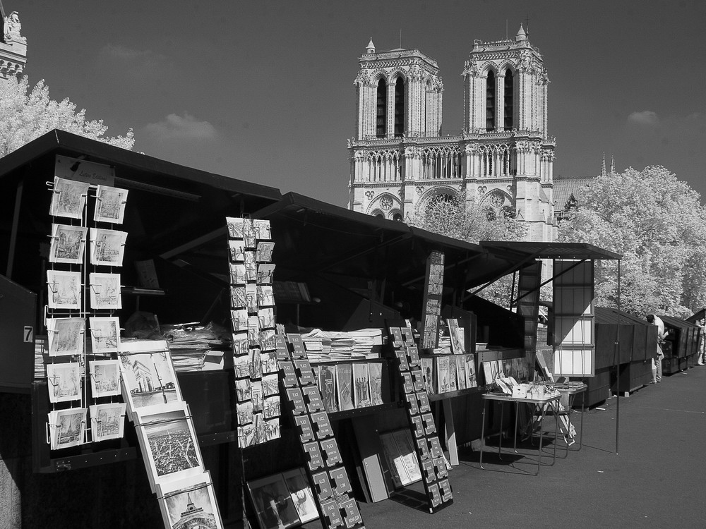 Booksellers, Paris Photography Art | The World in Black and White