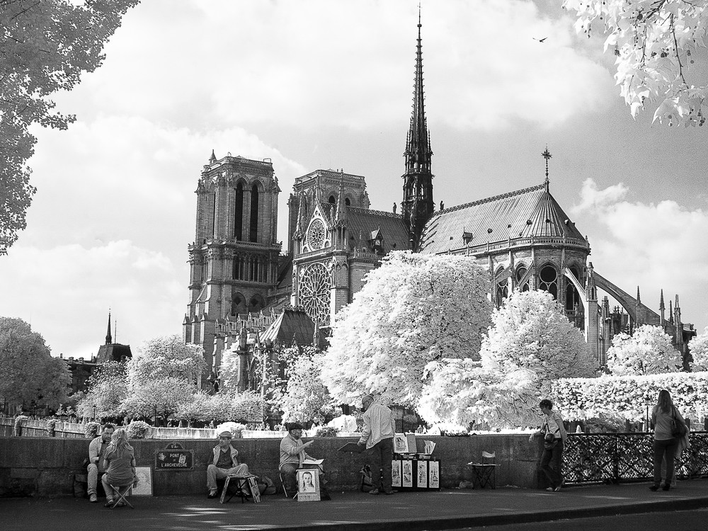Les Artistes Derriere Notre Dame Paris Photography Art | The World in Black and White