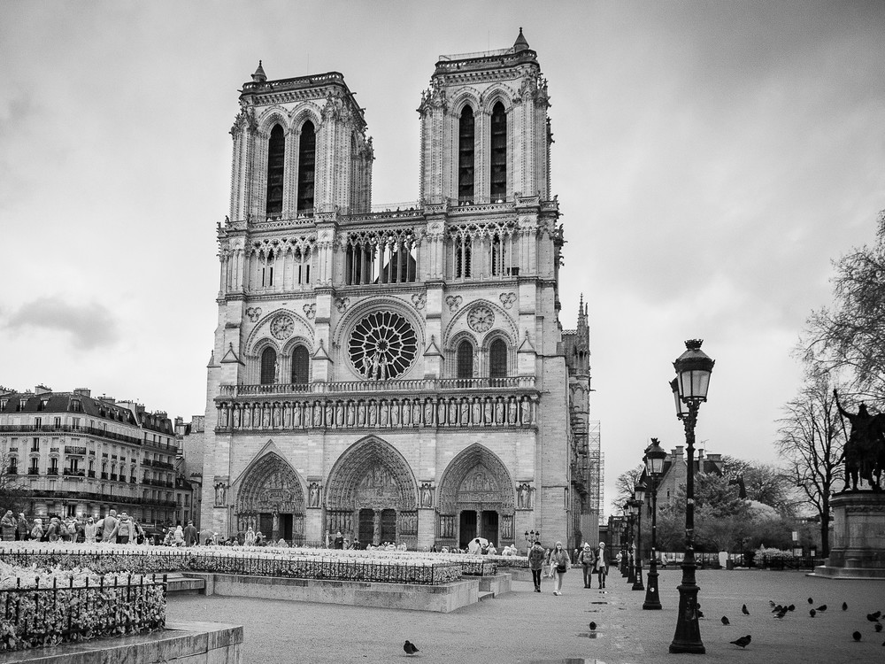 Notre Dame Paris Photography Art | The World in Black and White