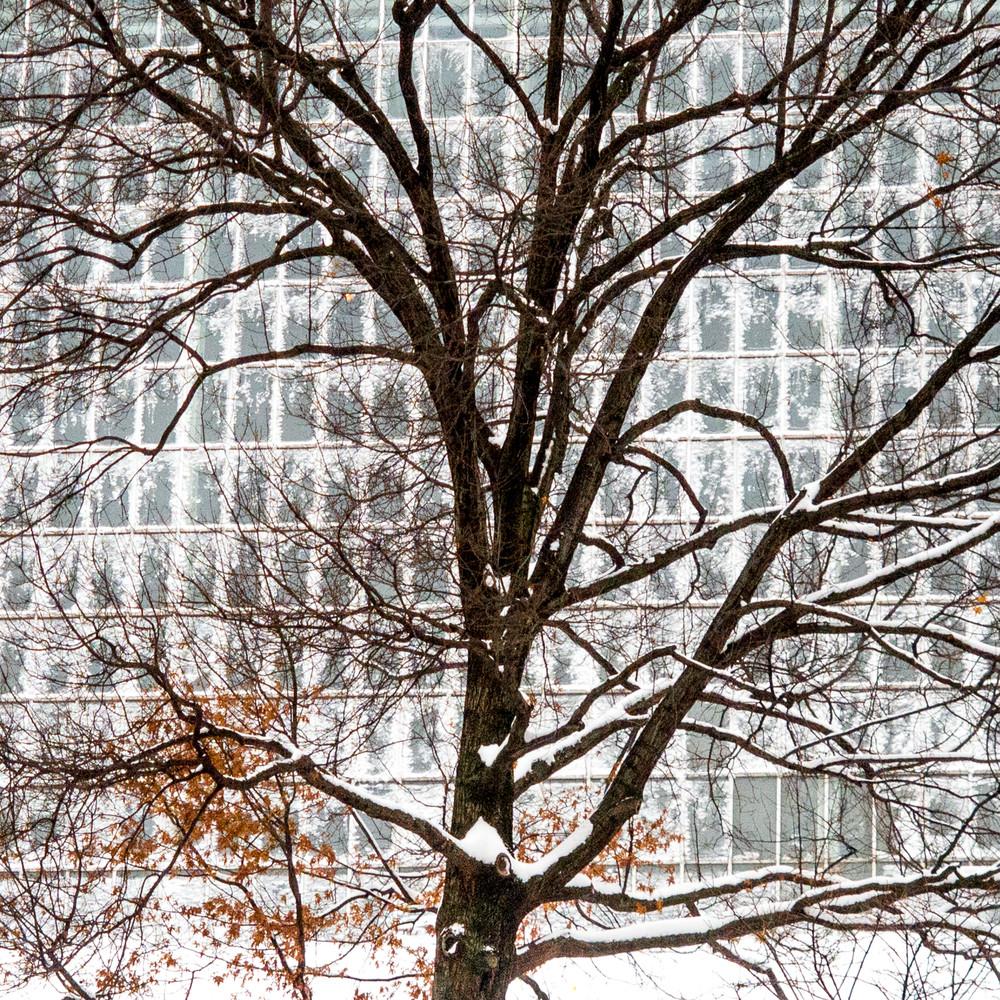 Temple Of Dendur Skylight Photography Art | Ben Asen Photography