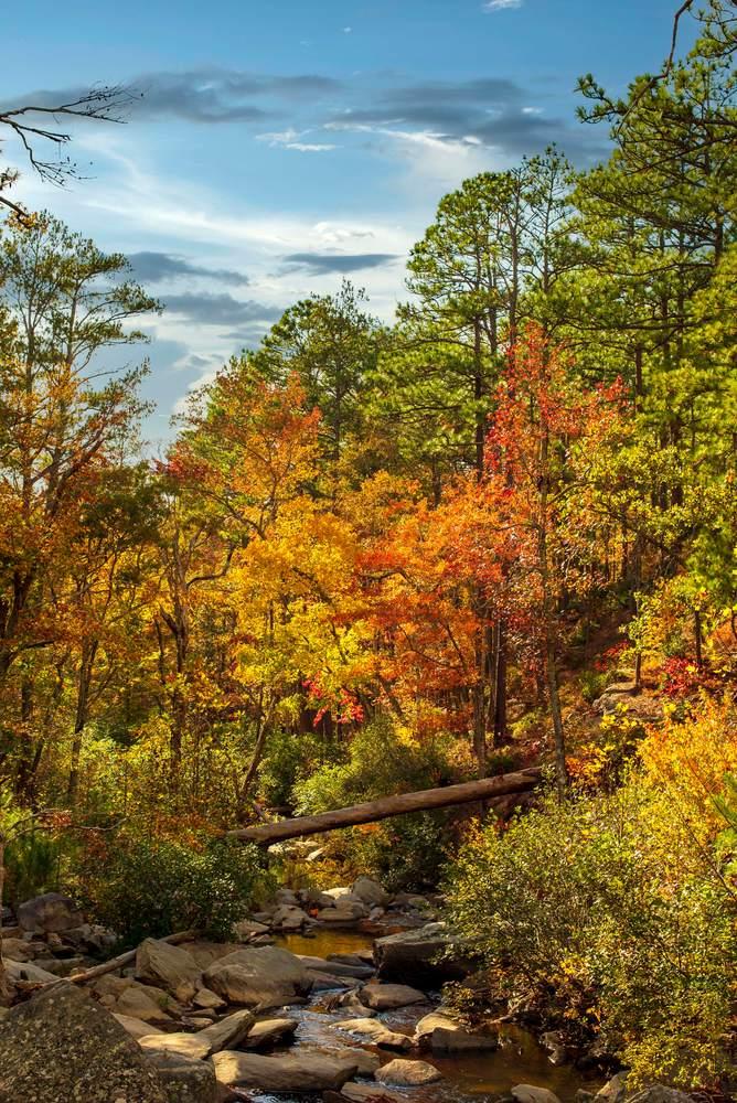 Autumn Cascades at Talladega National Forest