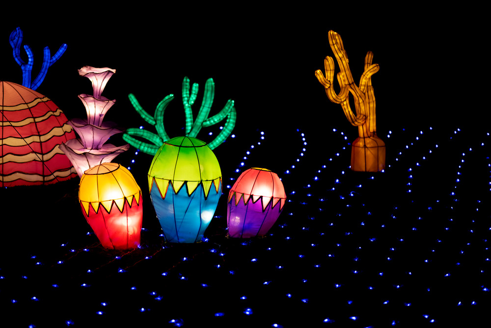 Coral lantern sculptures