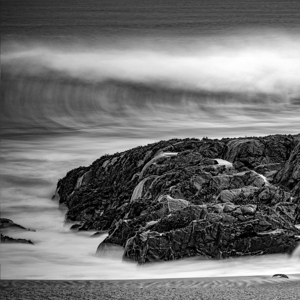 Harris Study3 Art   Roy Fraser Photographer
