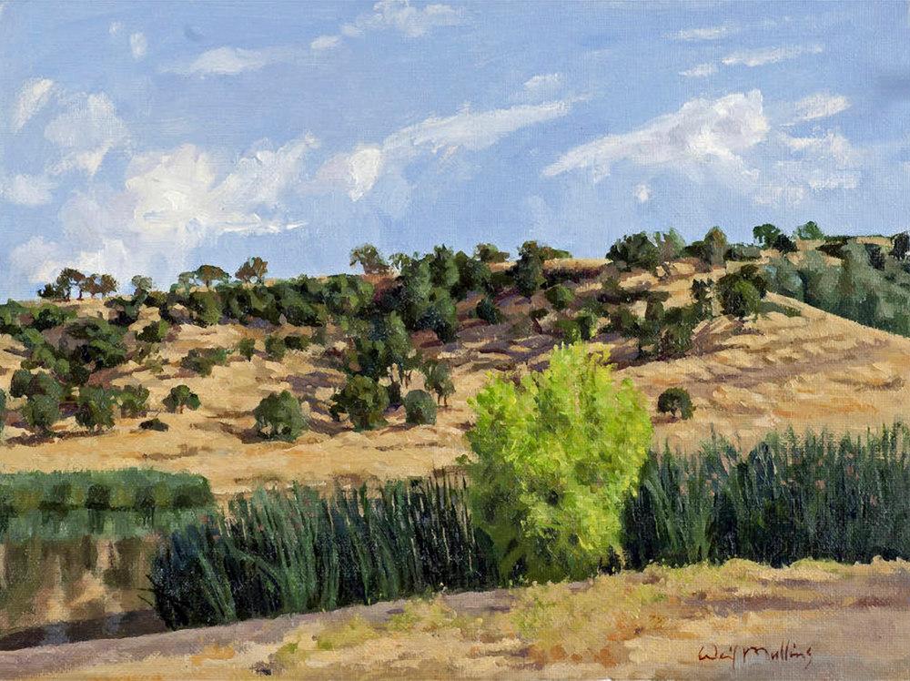 Horseshoe Lake, Morning  Art | Waif Mullins Art