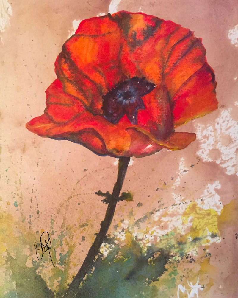 Red Wine Poppy Art | Christy! Studios