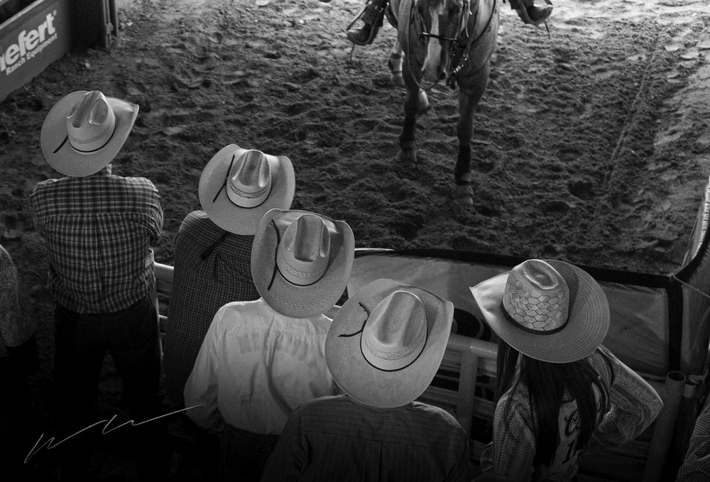 Behind The Gate Photography Art | Harry John Kerker Photo Artist