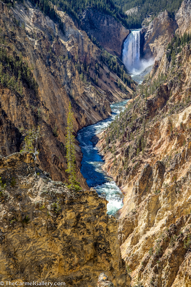 Artist's Point, Yellowstone Art | The Carmel Gallery