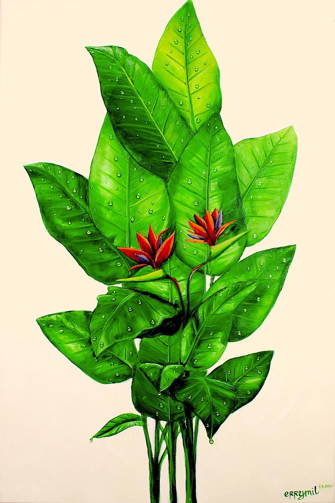 Birds Of Paradise Plant Art | errymilart
