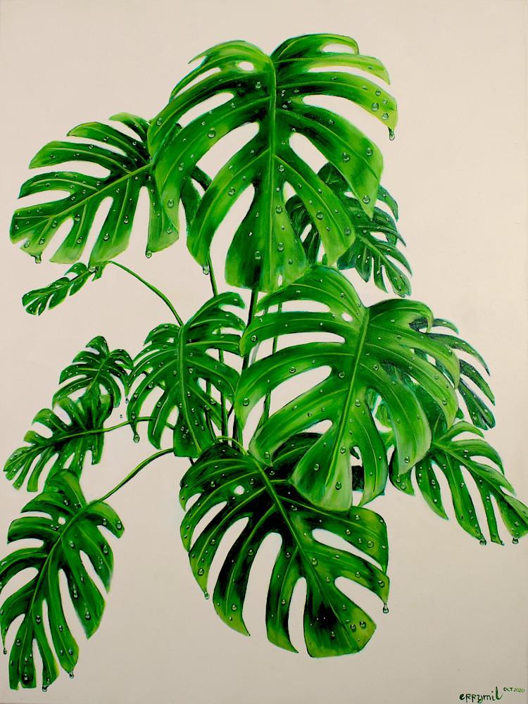 Monstera Deliciosa Plant Art   errymilart
