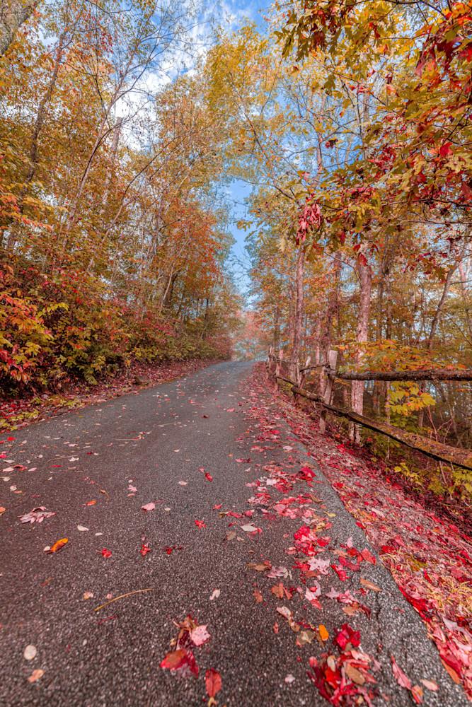 Fall In Franklin Photography Art   kramkranphoto