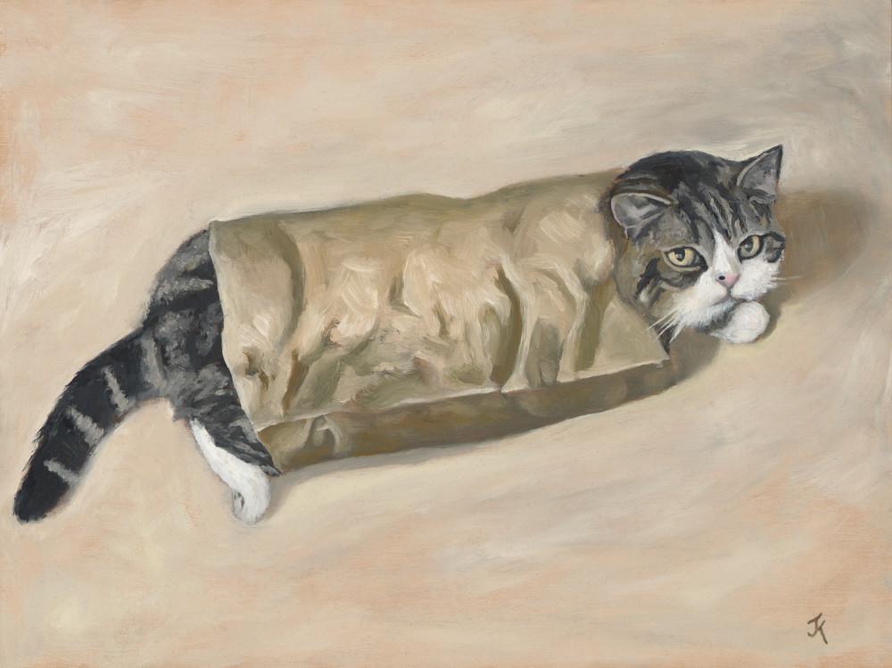 art of cat Maru
