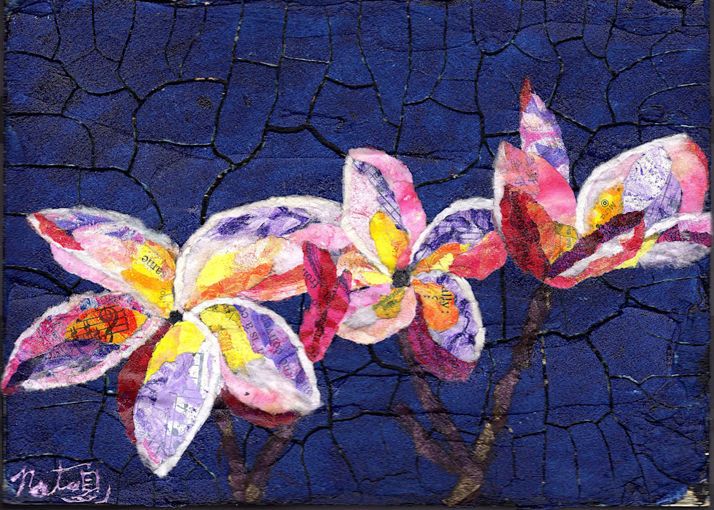 Plumerias Art | Poppyfish Studio