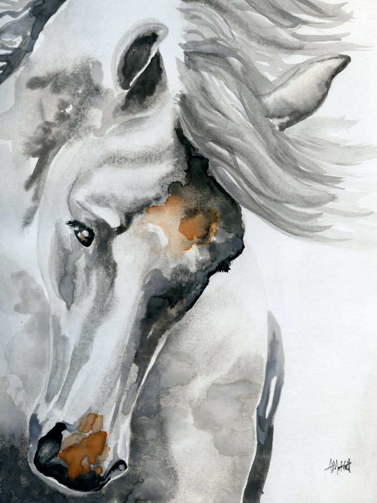 "Giclee Print ""White Horse Tossing His Head"" by April Moffatt"