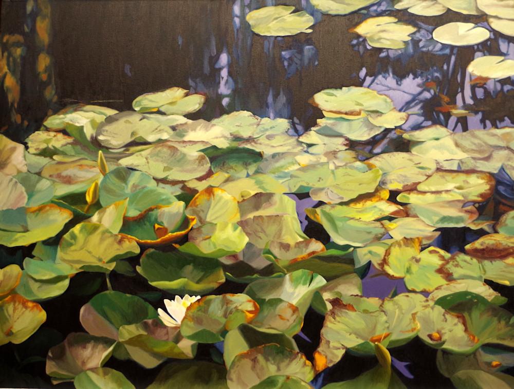 Pond Garden In Fall Art   Helen Vaughn Fine Art