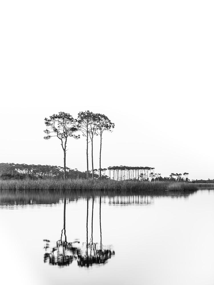Western Lake White On White Portrait  Art | Modus Photography