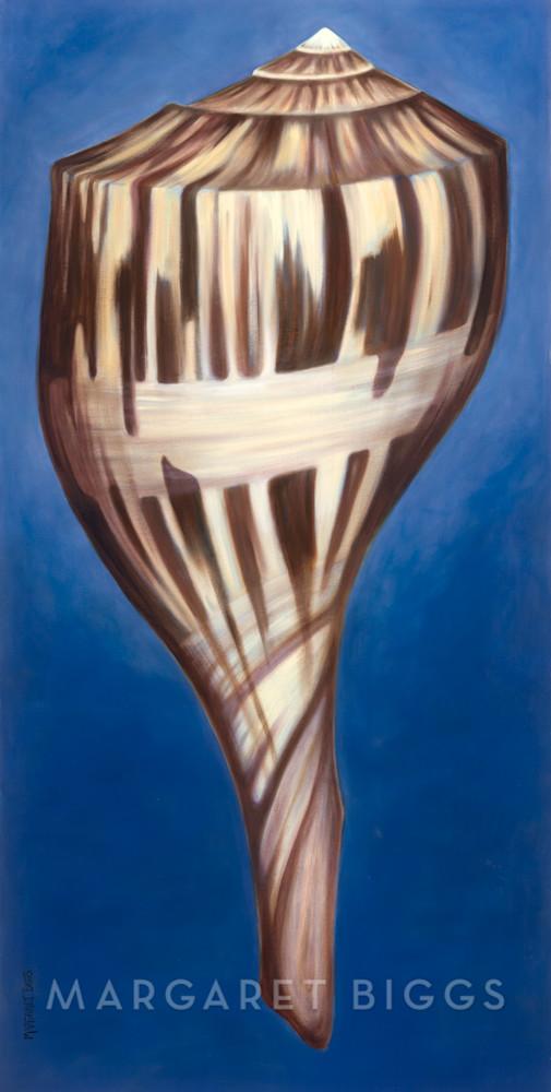 Pear Shell Art   Margaret Biggs Fine Art