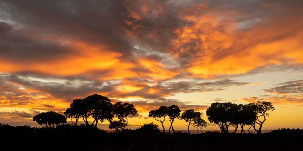 Sunset Beyond Kohanaiki Photography Art | Bird In Paradise