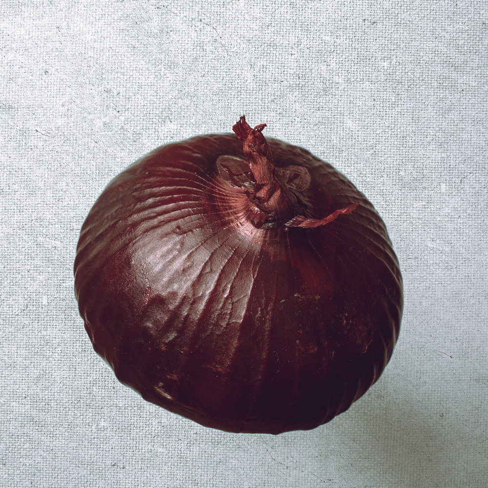 Food Canvas Red Onion by Nathan Larson.