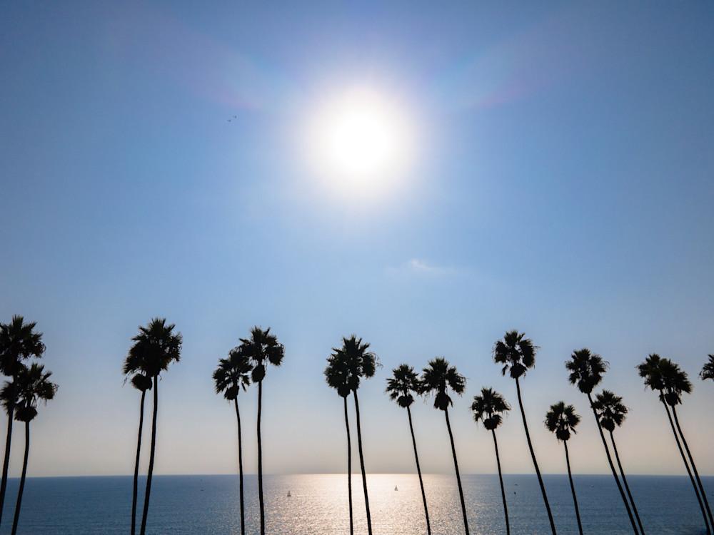 Aerial Beach Print, Palm Tree Beach Photography, Ocean print, coastal wall art, Los Angeles, Santa Monica, California, Large Beach photo
