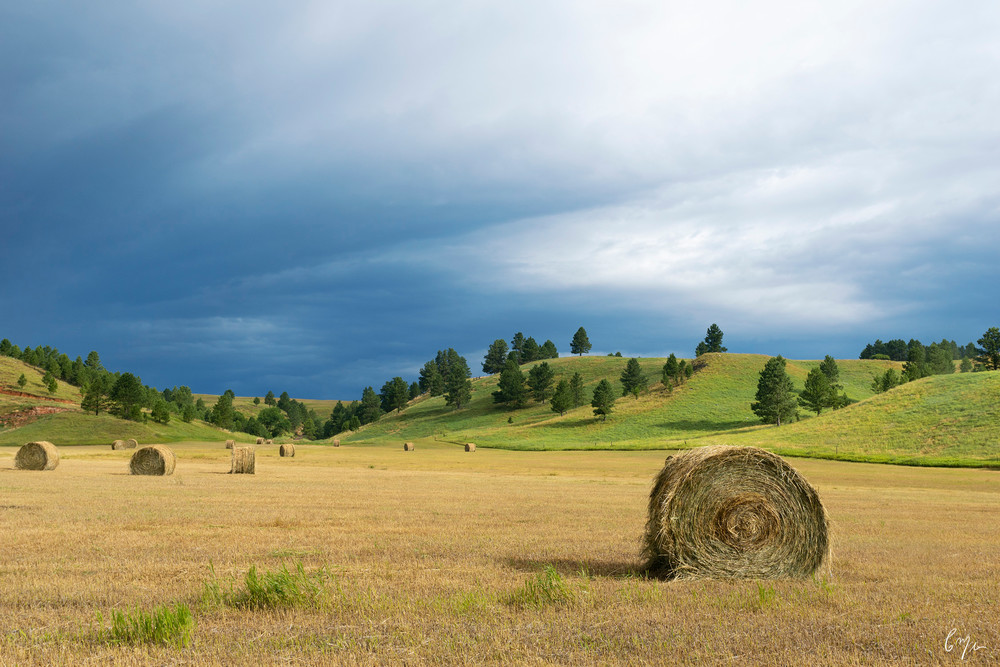 Constance Mier Photography - fine art farm scenes from across the great plains