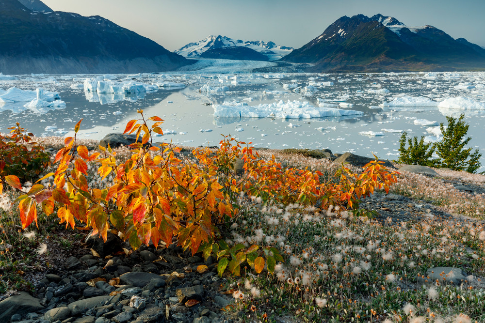 Summer landscape of ice bergs in Inner Lake George and Colony Glacier in the background.  Southcentral, Alaska.  Chugach Mountains  Photo by Jeff Schultz/  (C) 2019  ALL RIGHTS RESERVED