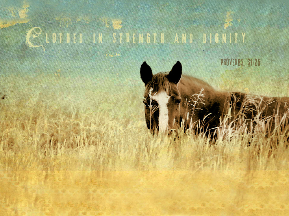Horse Clothed in Strength & Dignity