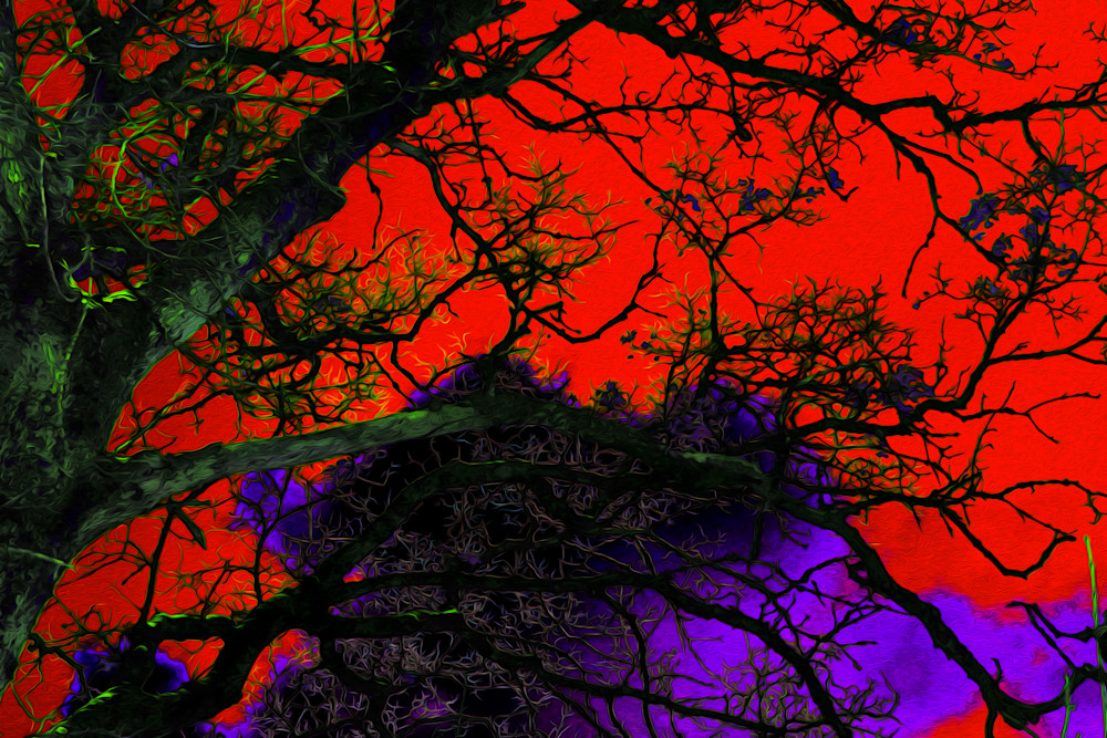 Violet Twilight Art | Oz Fine Art Studio