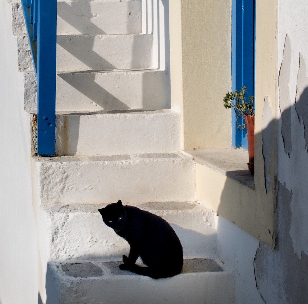 Black Cat Guarding Steps , Skopelos Photography Art   Ben Asen Photography