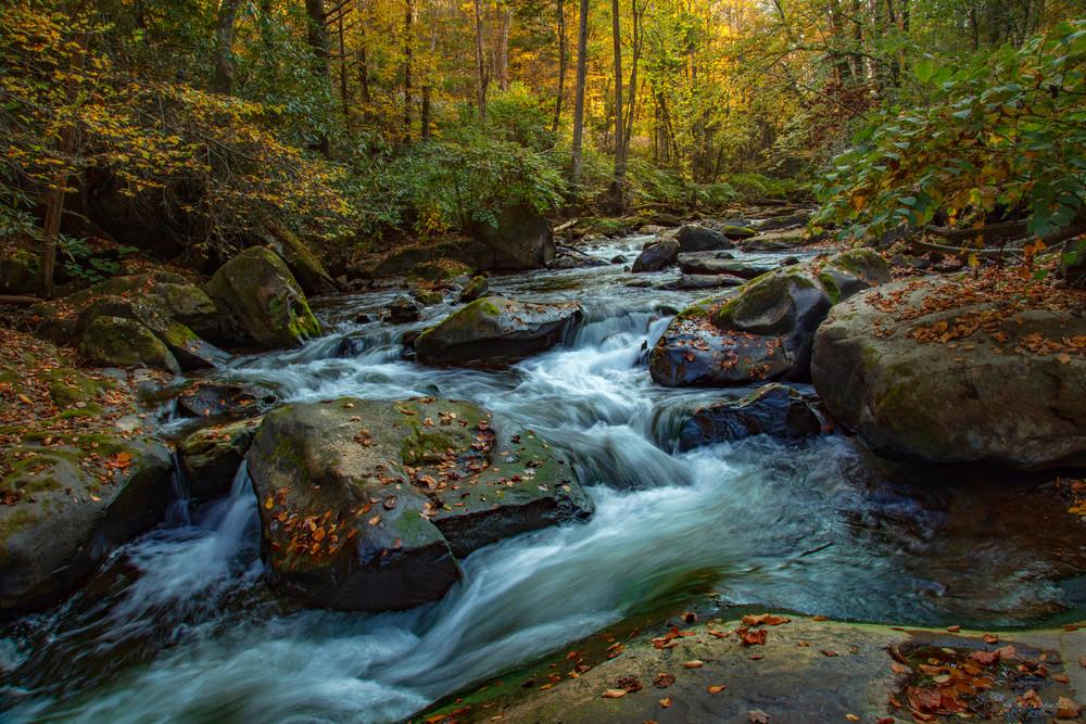 Wv Dunloup Creek Rocks G 0 W5 A1277 Fss Art | Koral Martin Fine Art Photography