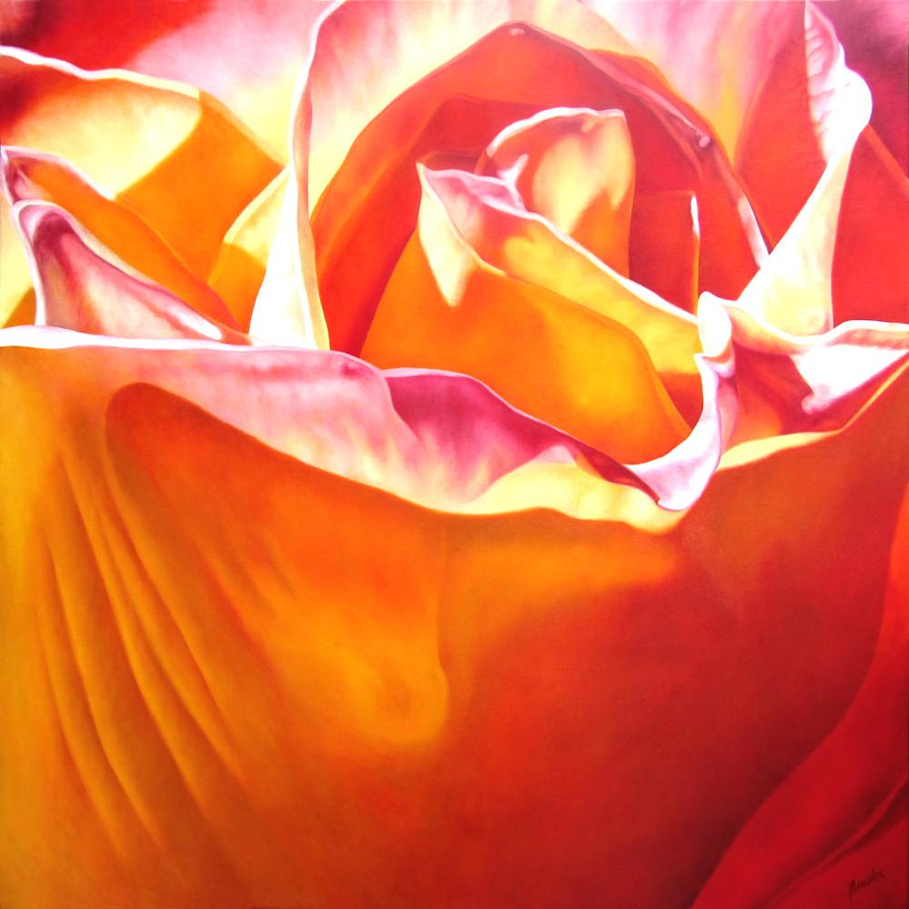 Orange Passion   Products Art | Mercedes Fine Art