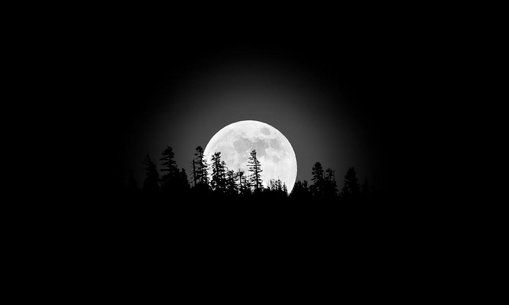 Over The Moon For You Art | Karen Hutton Fine Art