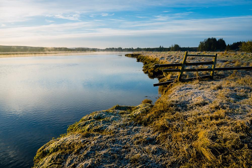 Winter Morning, Palix River, Washington, 2021