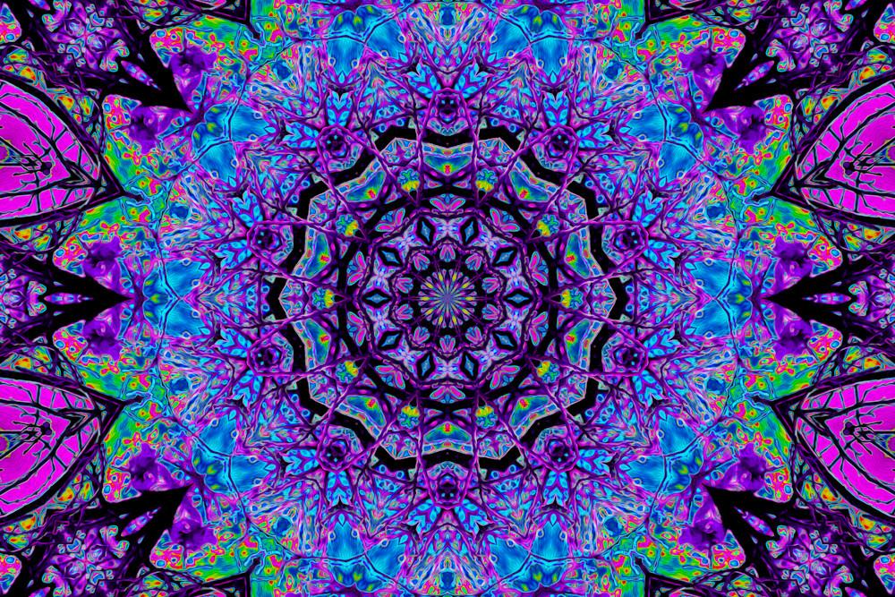 Ten Violet Spiders Art | Oz Fine Art Studio