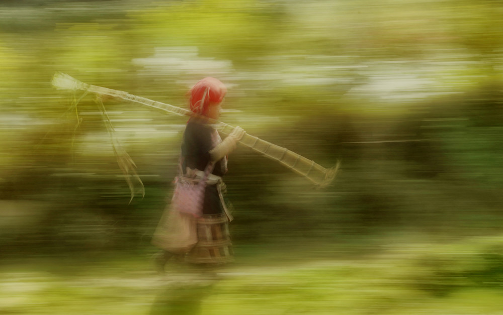 Sugar Cane Art   Danny Johananoff