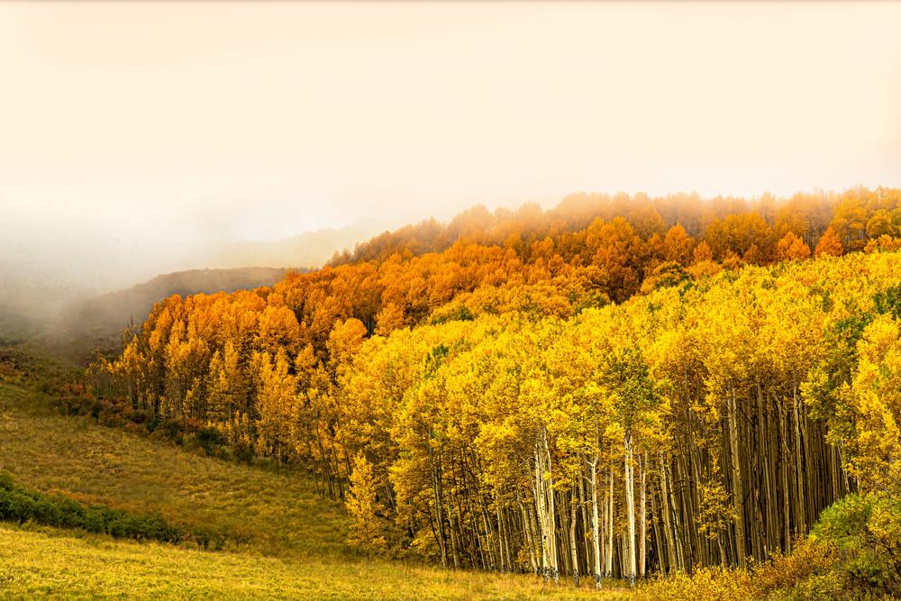 Aspen Heaven Photography Art | Felice Willat Photography