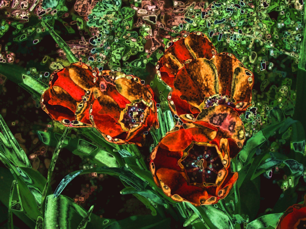 Digitized Orange Tulips