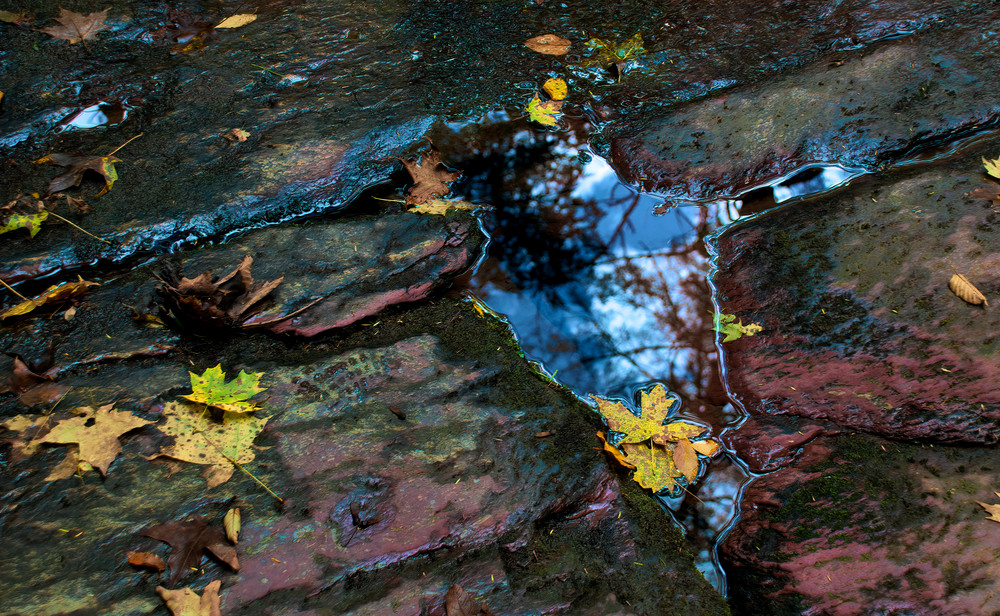 Winter's Onset Photography Art   Ed Sancious - Stillness In Change