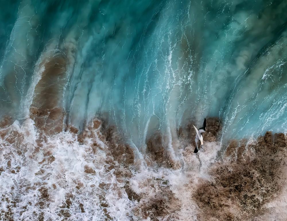 Flights At Sea Photography Art | Ed Sancious - Stillness In Change