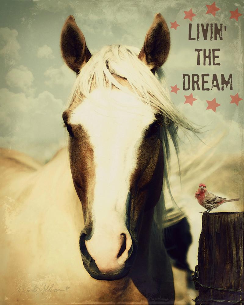 Palomino Living the dream