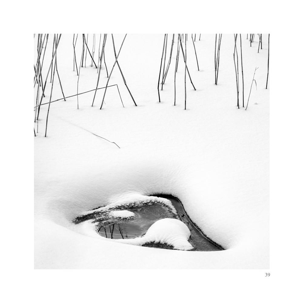 39 Art | Roy Fraser Photographer